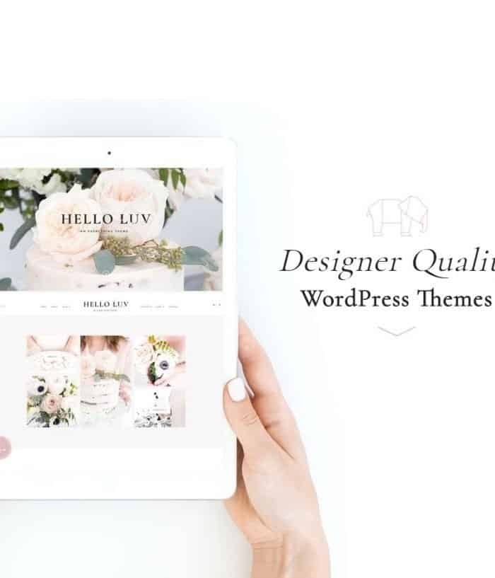 Tempat Beli Themes Wordpress Premium Hello You Design